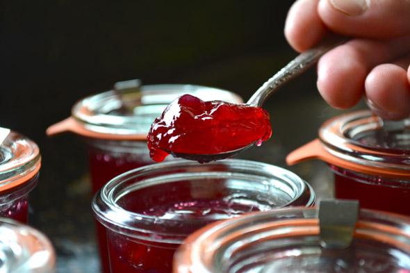 заготовка из красной смородины
