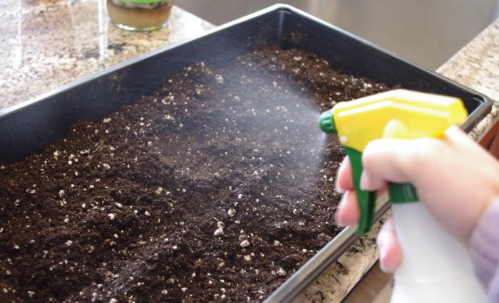 Обработка почвы химическими средствами