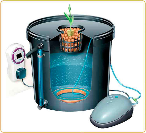 Гидропонная установка на одно растение