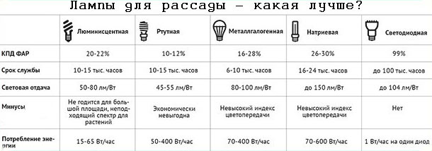 Виды ламп для рассады