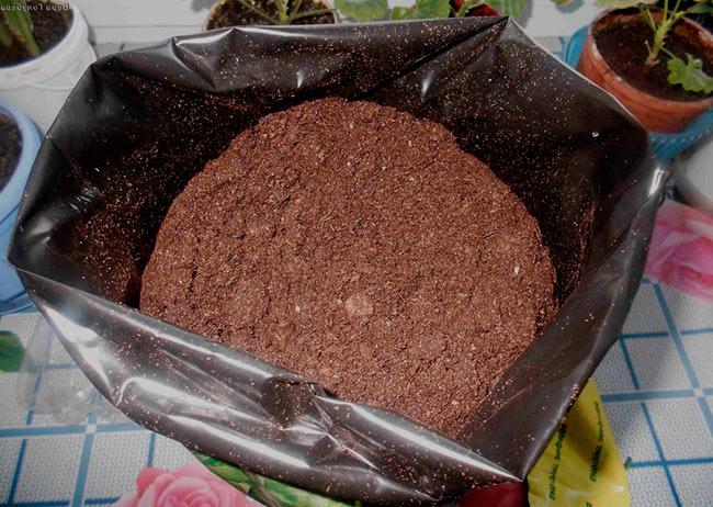 Для посадки семян кабачков можно приобрести грунт, обогащенный всеми необходимыми микроэлементами
