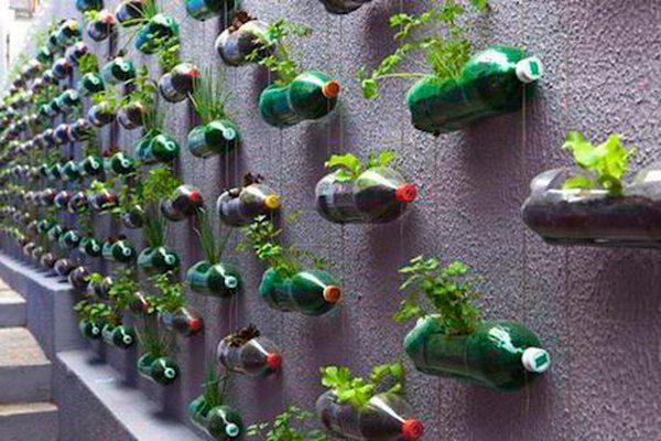 Вертикальные грядки в горизонтально расположенных бутылках