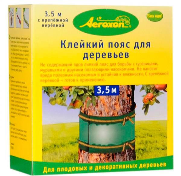 Клейкий пояс для деревьев можно приобрести в магазине или сделать самостоятельно из двухстороннего скотча