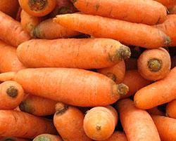 """Морковь """"Витаминная 6"""""""