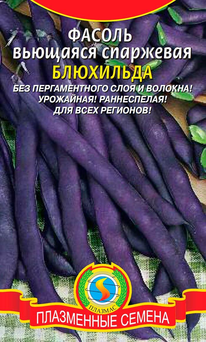 Чрная фасоль распространнные сорта и агротехника культуры