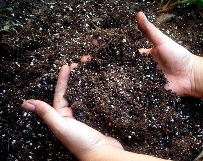 Кальциевая селитра инструкция по применению удобрения на огороде свойства
