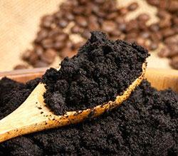 Удобрение рассады кофейной гущей