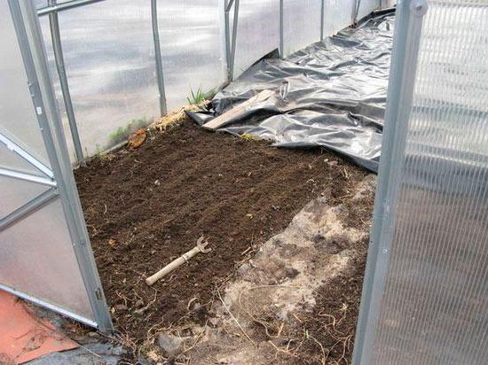 Обработка почвы кипятком